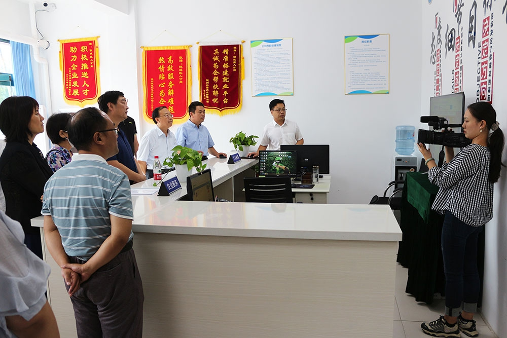 区人大常委会来陵城区人才网运营中心开展专题检查调研
